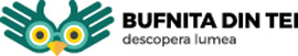 logo_BUFNITADINTEI-1